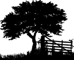Logo-st-header-149×120